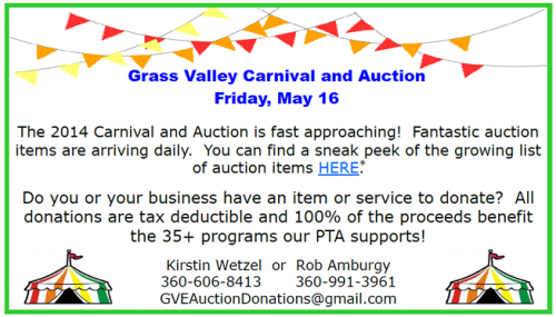 CarnivalAuction2014