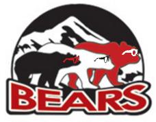 bearsglasses